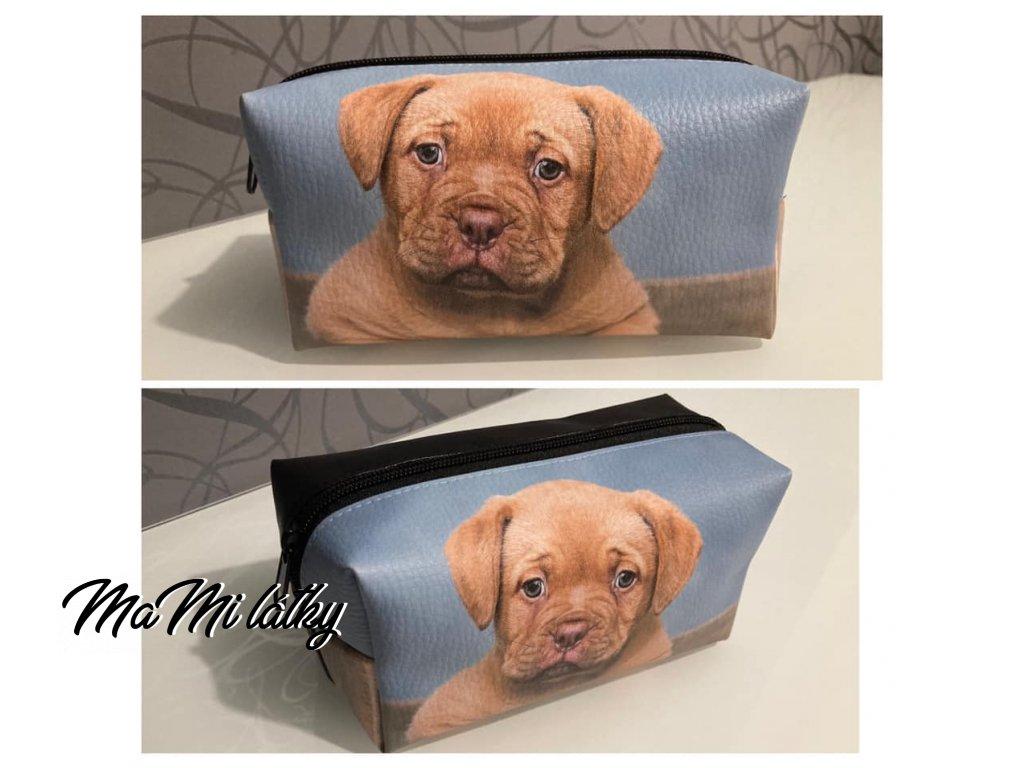 štěně bílé