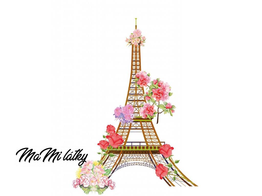 paříž květyb