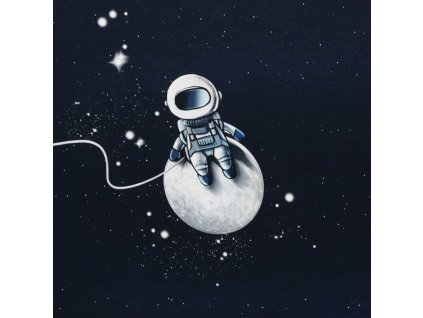 stoff panel french terry sommersweat swafing moonwalker astronaut by thorsten berger 1~3