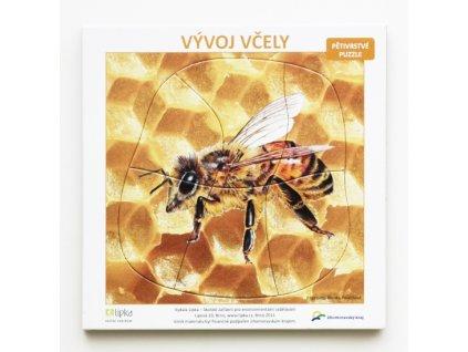 Vývoj včely (vícevrstvé puzzle)