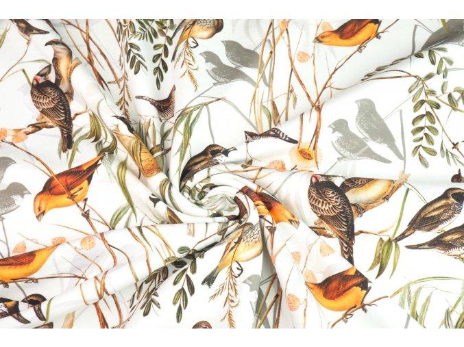 teplakovina metraz ptaci ve vetvich