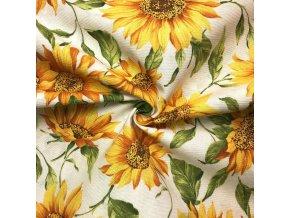 Bavlna režná plazivé slunečnice