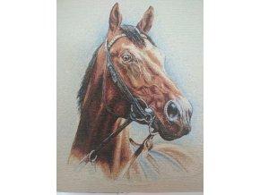 Bavlna režná panel hlava koně