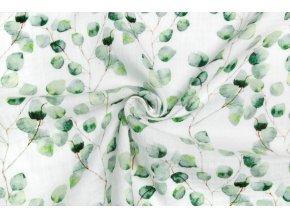 facovina eukalyptus