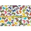 Bavlněné plátno barevní motýli3
