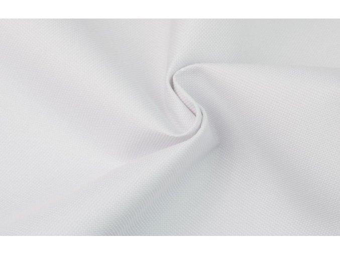 Kočíkovina biela