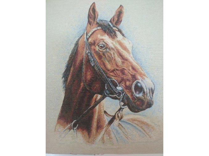 Bavlna režná panel hlava koňa