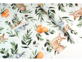 Kočíkovina zajace, veveričky a srnci