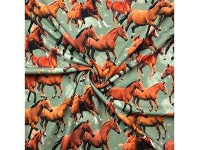 Bavlnený úplet kone