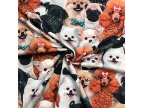 Bavlnený úplet psi