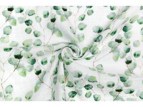 Bio fáčovina eukalyptus