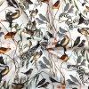 Kočíkovina vtáky vo vetvičkách