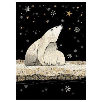 Přání do obálky Bug Art - Polar Bears