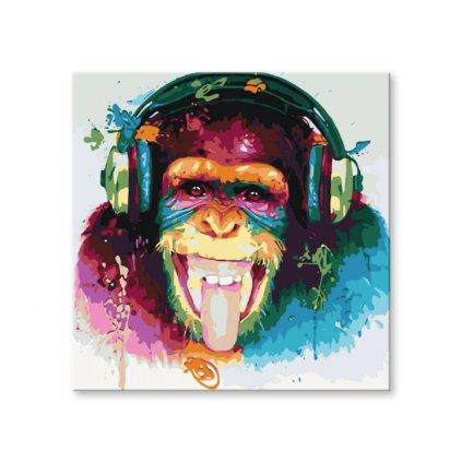 Opice se sluchátky, Malování podle čísel (2)