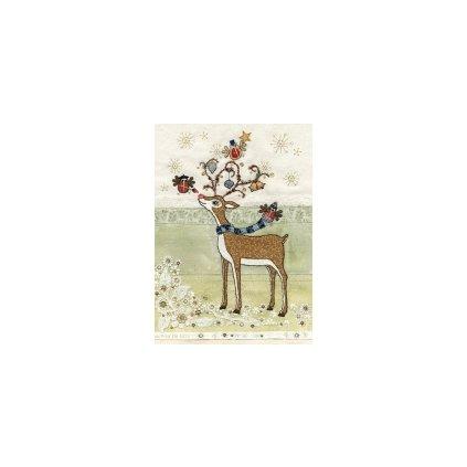 Přání do obálky Bug Art - Rudolphs Adornment