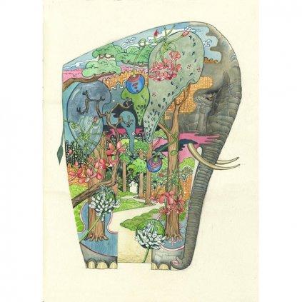 Přání do obálky The DM Collection - Forest Elephant