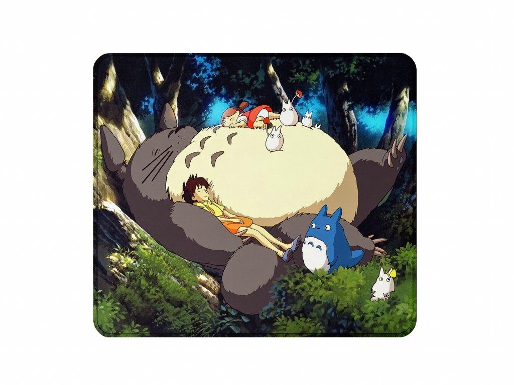 Sleeping Totoro