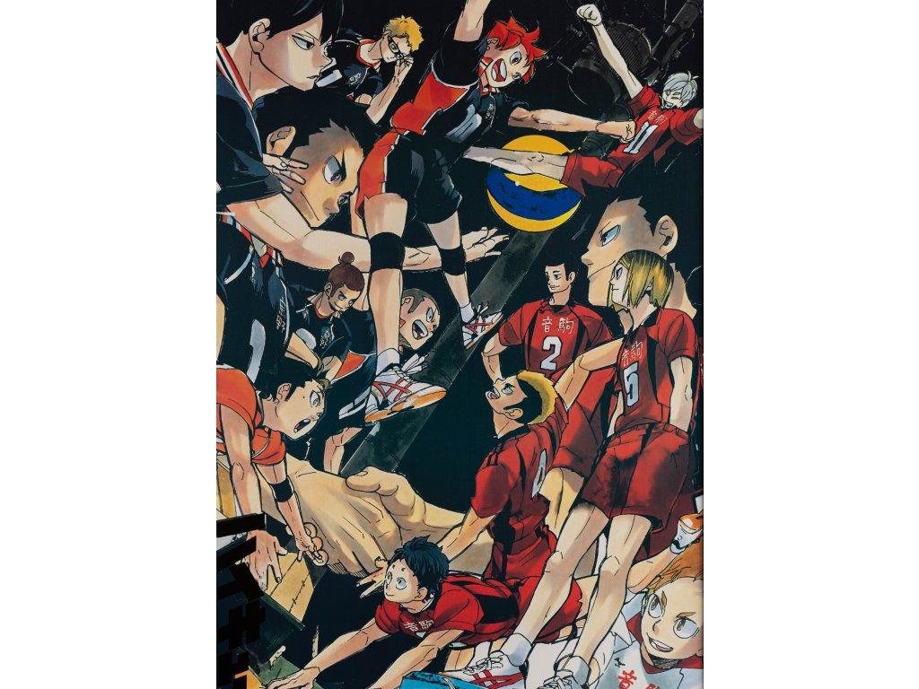 Plakát Haikyu - 2 (N)