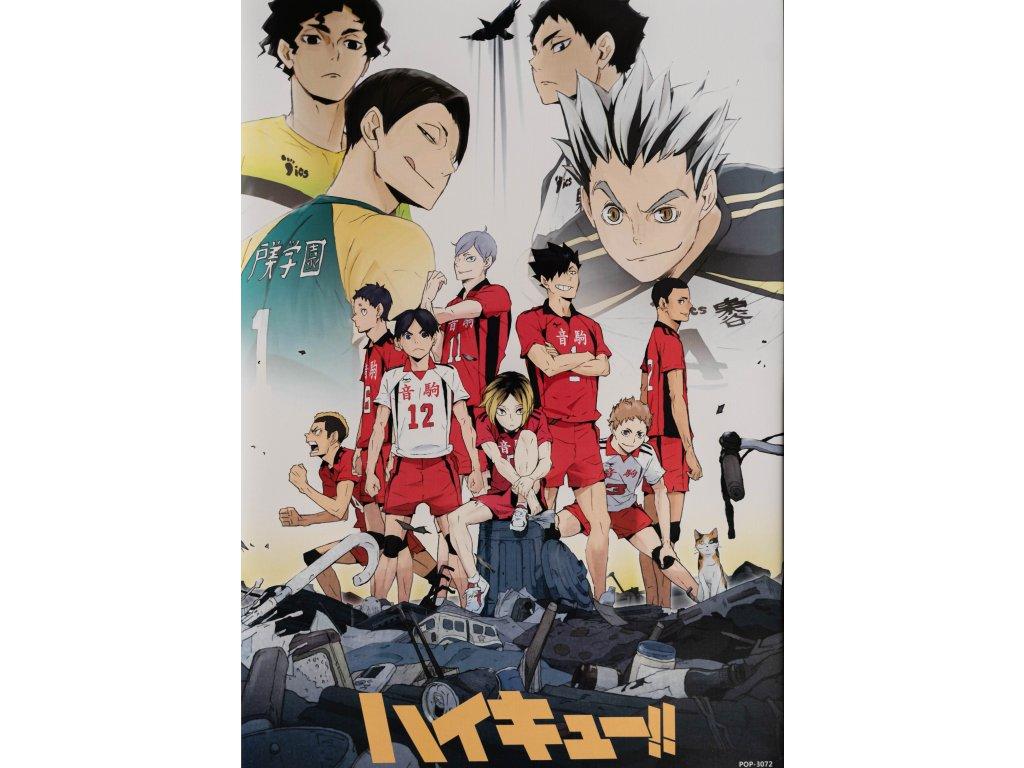 Plakát Haikyu - 11 (N)