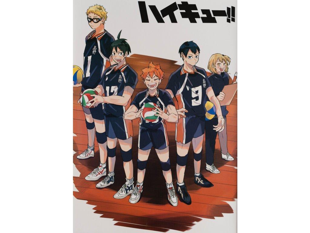 Plakát Haikyu - 15 (N)