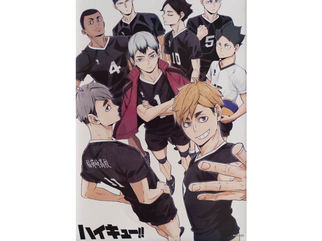 Plakát Haikyu - 16 (N)