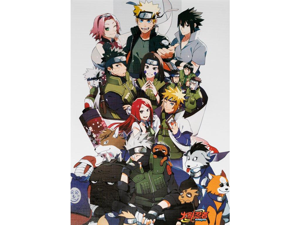 Plakát Naruto - 5 (N)