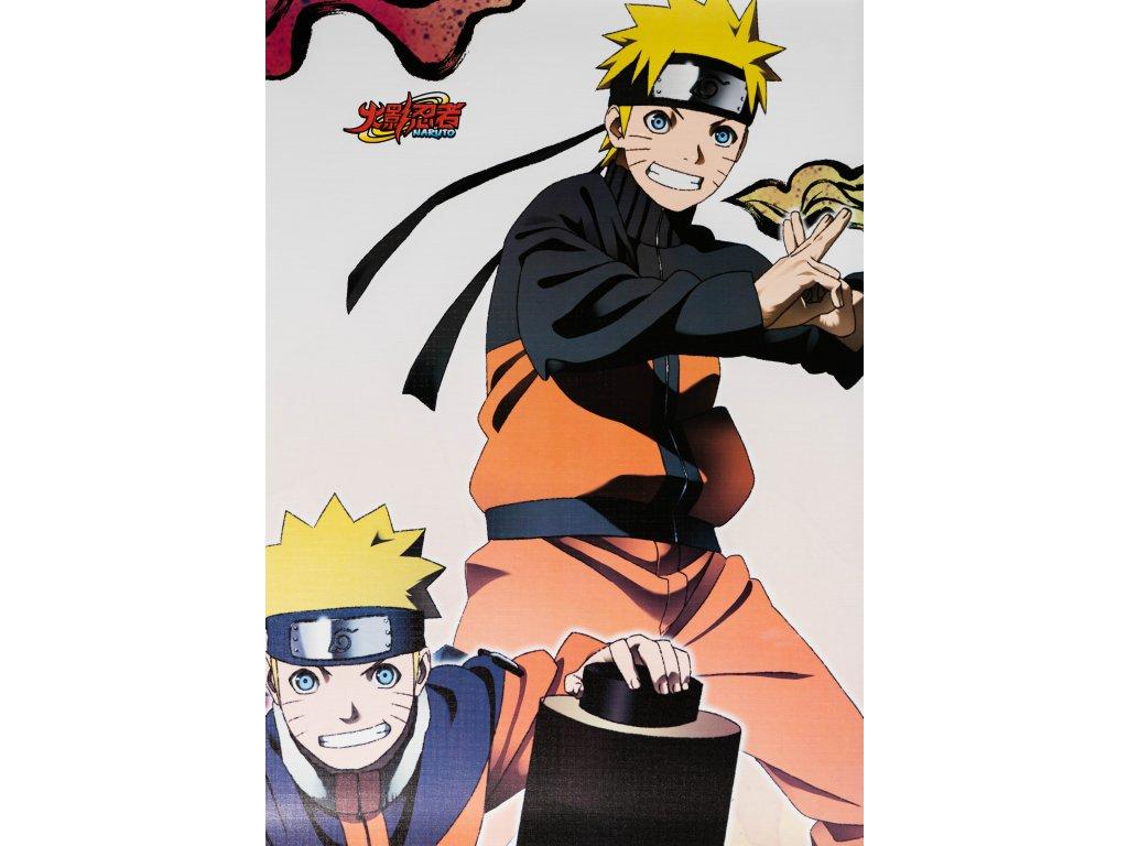 Plakát Naruto - 8 (N)