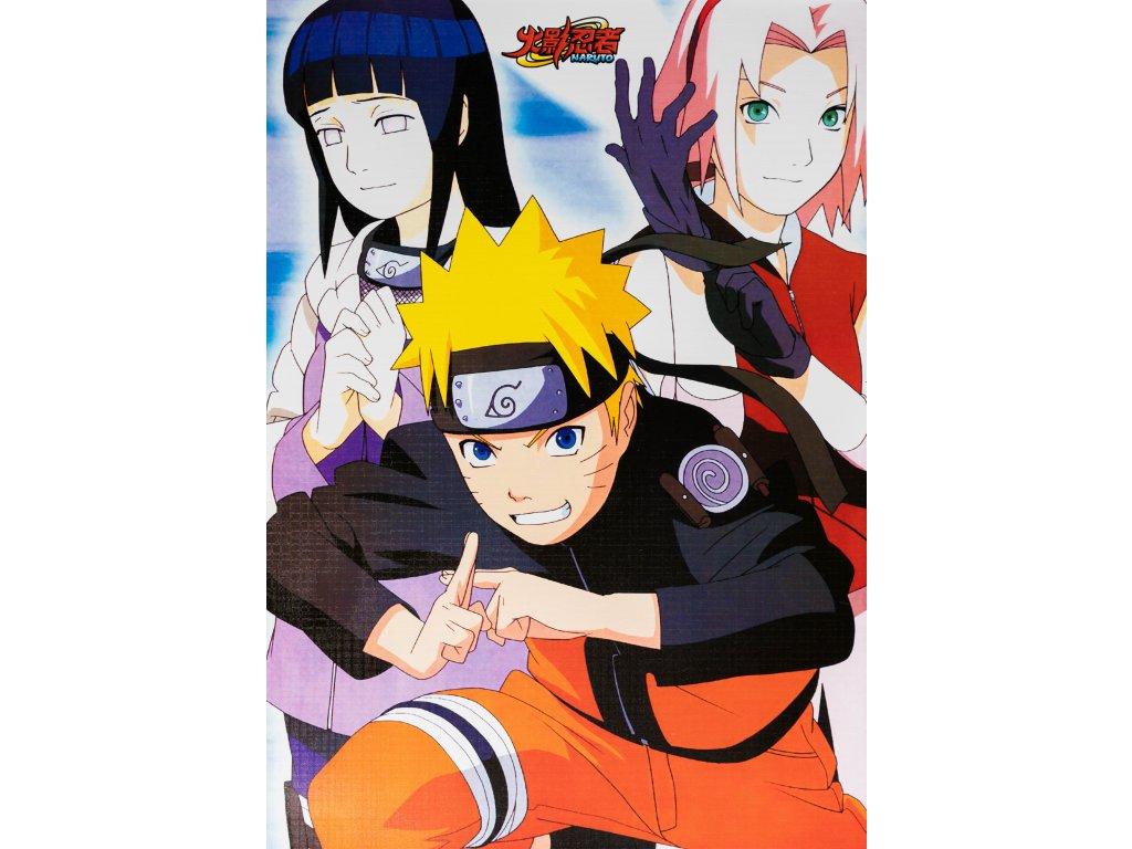 Plakát Naruto - 11 (N)