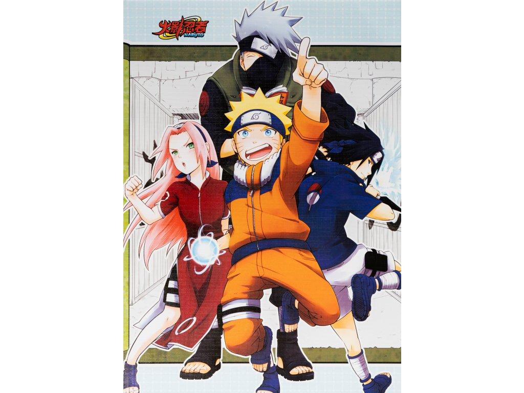 Plakát Naruto - 16 (N)