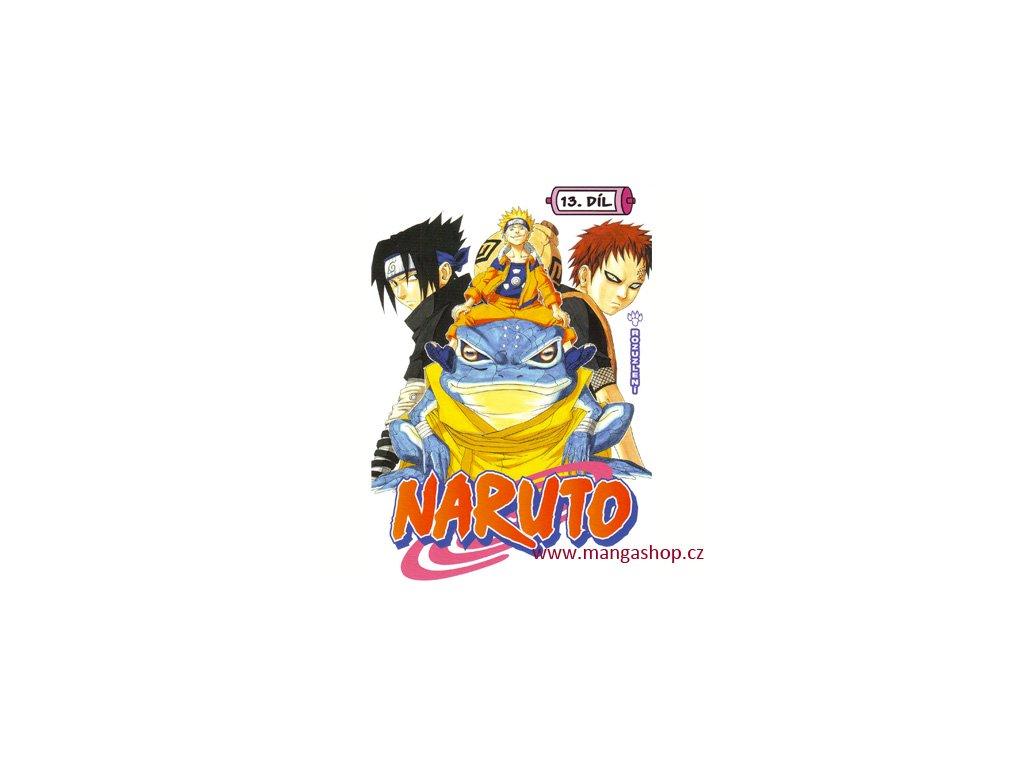 Naruto 13: Rozuzlení