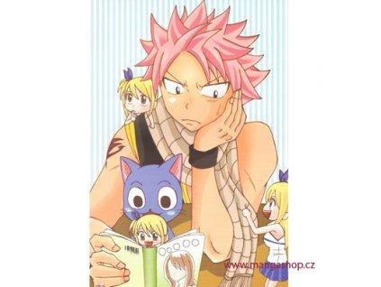 Plakát Fairy Tail 114