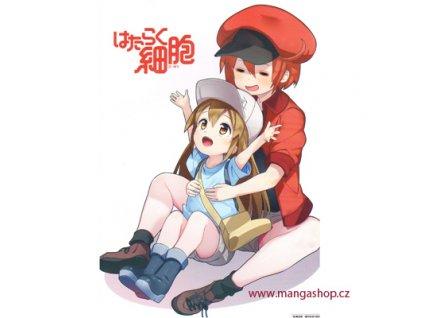 Plakát Hataraku Saibou 2