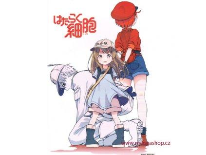 Plakát Hataraku Saibou 3