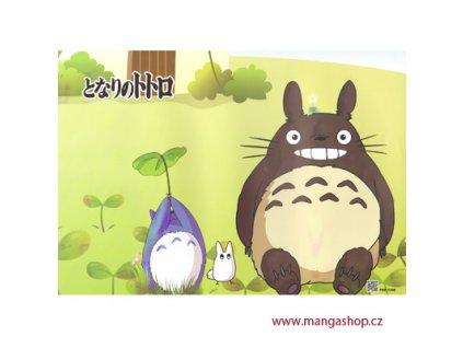 Plakát Totoro 28