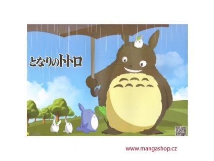 Plakát Totoro 33