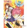 Plakát Fairy Tail 86