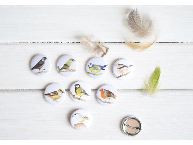 placky ptacci1