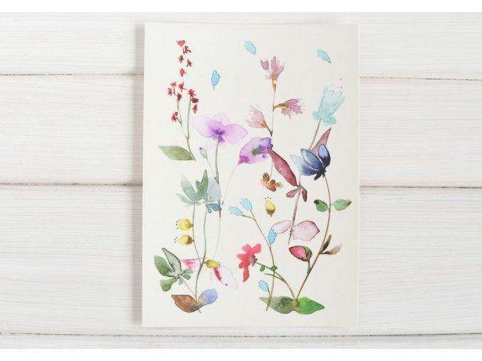 pohlednice louka