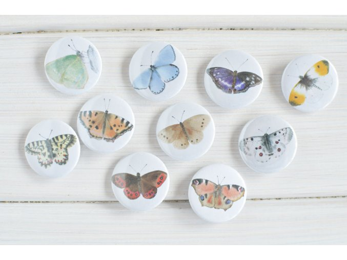 placky motyli