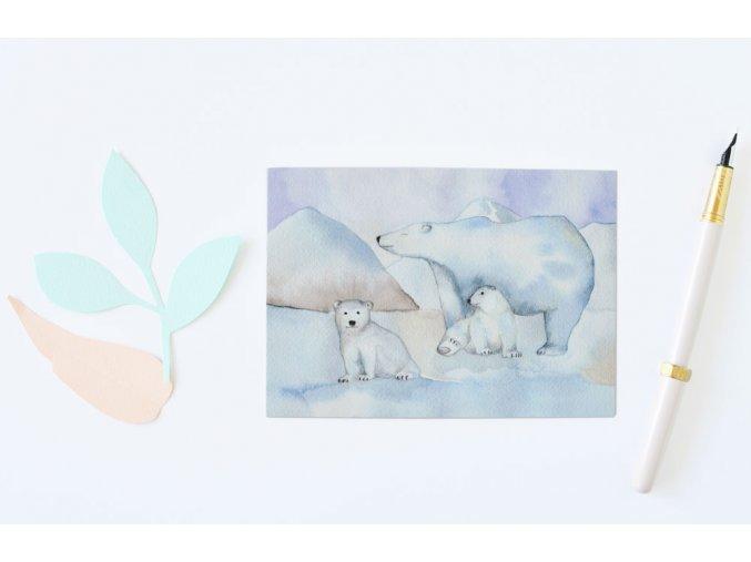 pohlednice medvedi