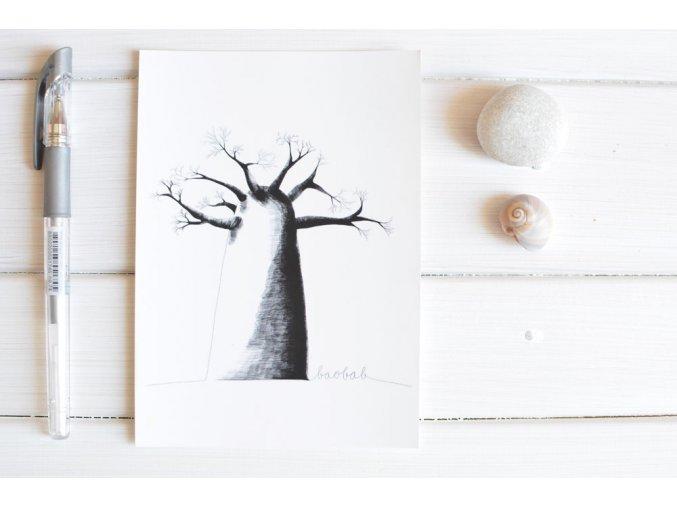 pohlednice baobab2