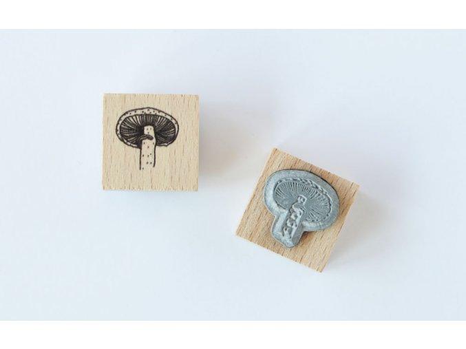razitko houba