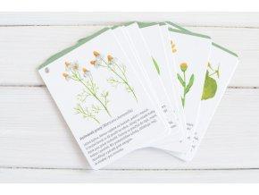 karticky rostliny2