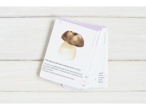 karticky houby1