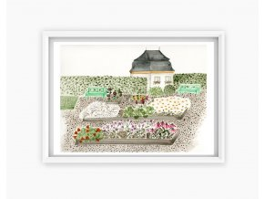 kuks zahradka