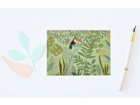 pohlednice dzungle