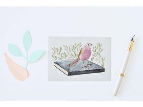 pohlednice ptacek