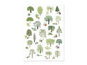 pohlednice stromy