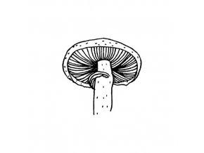 razitko houba2