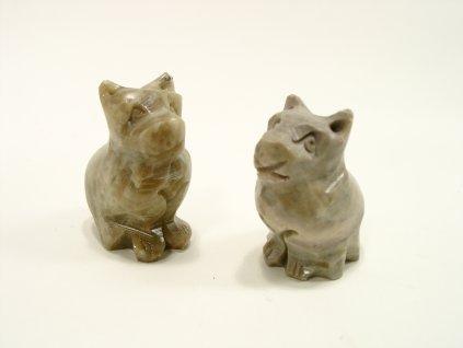 Kočka kamenná